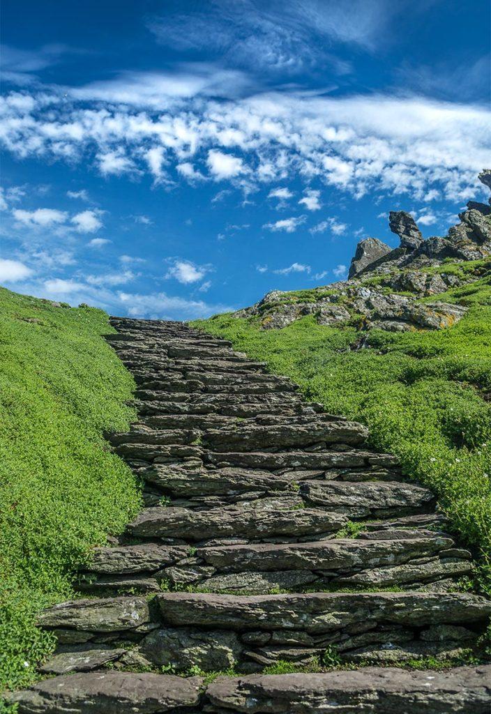 Steps-Col
