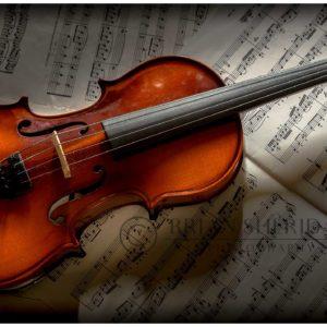 Violin-on Sheet-1